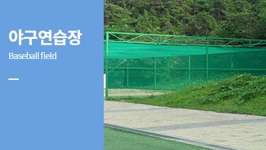 야구연습장(baseball field)
